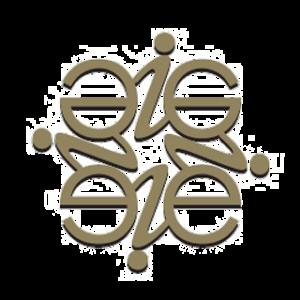 EI-LogoGlyph-EnergyInvestment